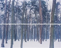 winter 2 from liquidation (diptych) by ori gersht