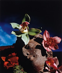 greek head of orchids by horst p. horst