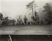 7 a.m. pacific war time by edward weston