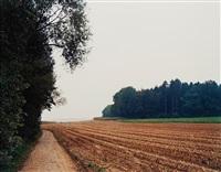 mais-acker nachder ernte n°34, winterthur by thomas struth