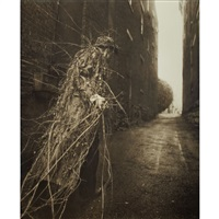 earthcoat by robert & shana parkeharrison