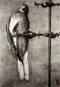 bird catcher by william kentridge