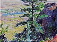 mountain view of the broadmoor hotel, colorado springs by robert reid