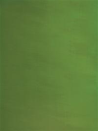 green screen #7 by liz deschenes