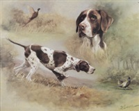 a pointer with pheasants (study) by desmond snee