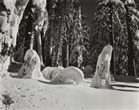 snow, yosemite by edward weston
