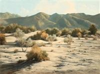 anderson wash, desert landscape by darwin duncan