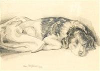 sleeping puppy by sven berlin