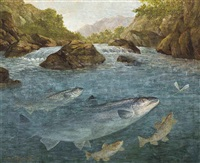 sea-trout, brown trout and a salmon rising for a dragonfly by john russell