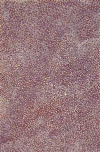 bush plum by angelina pwerle