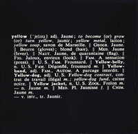 titled (art as idea as idea) by joseph kosuth