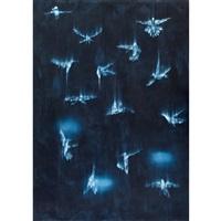 falling birds #3 by ross bleckner