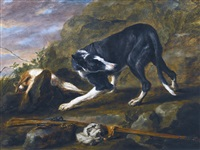a hound with a rabbit and a musket in a landscape by jan fyt