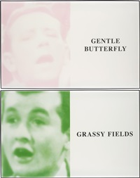 prima facie (fifth state): gentle butterfly / grassy fields (in 2 parts) by john baldessari
