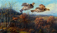 grouse in flight by edmund henry osthaus