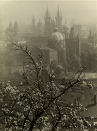 view of prague from the seminarska garden by josef sudek