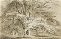 beech trees at cassiobury park, hertfordshire by joseph mallord william turner