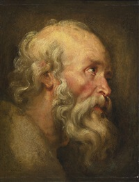 head of an old man by sir peter paul rubens