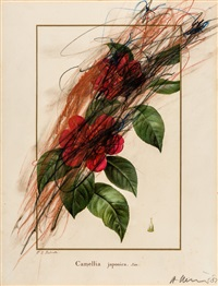 camellia japonica (blumenübermalung) by arnulf rainer