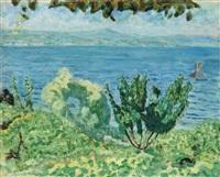 marine saint-tropez ou les arbres et la mer by pierre bonnard