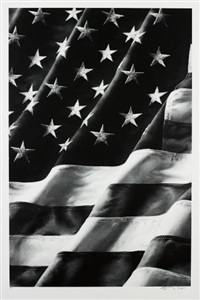 old glory, left side by robert longo