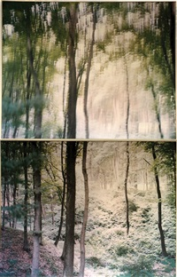 diptych: unsettled (from liquidation series) by ori gersht