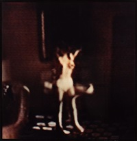 journal, 20 avril 1984 (from modern romance) by david levinthal