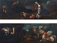 natura morta con tacchino, gallo, coniglio, pappagallo, airone in un paesaggio (+ natura morta con due galli che combattono, pesci ed airone in un paesaggio; pair) by giovanni agostino (abate) cassana
