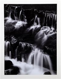 fern spring, dusk, yosemite valley by ansel adams