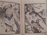série hokusai gafu, fleurs et oiseaux by katsushika hokusai