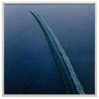 fissure dans la glace, rameaux de douglas by nils udo