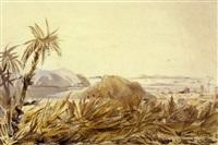 voyage dans l'amérique du sud by édouard quesnel