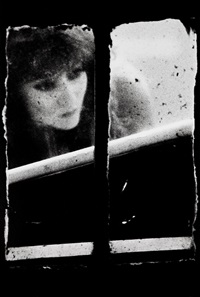 de la série window by merry alpern