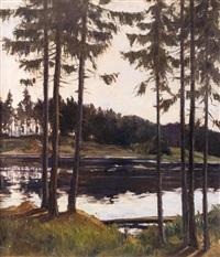 fichten am waldsee by lois alton