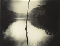 untitled (deep south #22) by sally mann