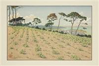 douarnenez sur le chemin du grand ris. planche de la série le beau pays de bretagne by henri rivière