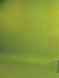 green screen #5 by liz deschenes