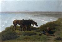 chevaux bretons sur les falaises de ris par temps de brise, péninsule de douarnenez by théodore valerio
