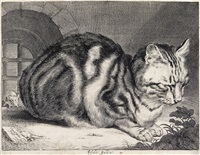 the large cat by cornelis visscher