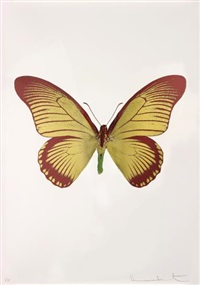the souls iv (oriental gold/burgundy/leaf green) by damien hirst