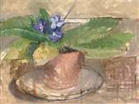 potted violet by william coldstream