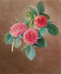 drei rosen by ferenc komlosy