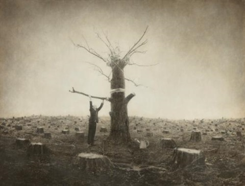 arbor day from the architects brother series by robert shana parkeharrison