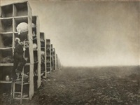 the collector (from the architect's brother series) by robert & shana parkeharrison