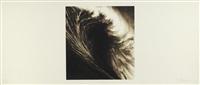september, from wave portfolio by robert longo