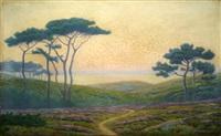 les pins sur la lande en bord de mer, couchant by andré morisset