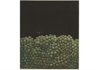 grapes in darkness by yozo hamaguchi