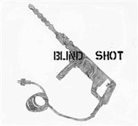 blind shot by monica bonvicini