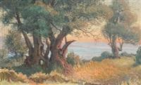 les grands arbres, bord de mer soleil couchant by etienne philippe martin