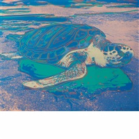 turtle by andy warhol